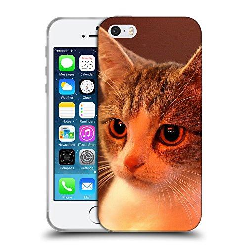 Just Phone Cases Coque de Protection TPU Silicone Case pour // V00004222 Charmante maison chaton // Apple iPhone 5 5S 5G SE