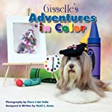 Gisselle's Adventures in Color, Heidi L. Ames, 1608444368