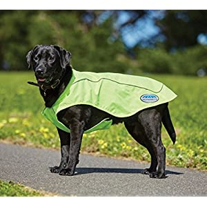 Weatherbeeta New Reflective Exercise Dog Coat, Yellow, 22″ Click on image for further info.
