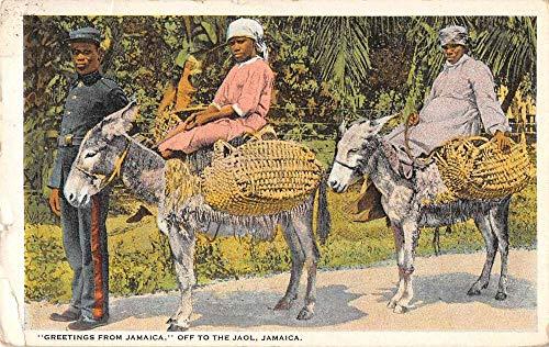 "Jamaica Police Officer""Off to the Jaol"" Women on Donkeys Postcard JE229350"