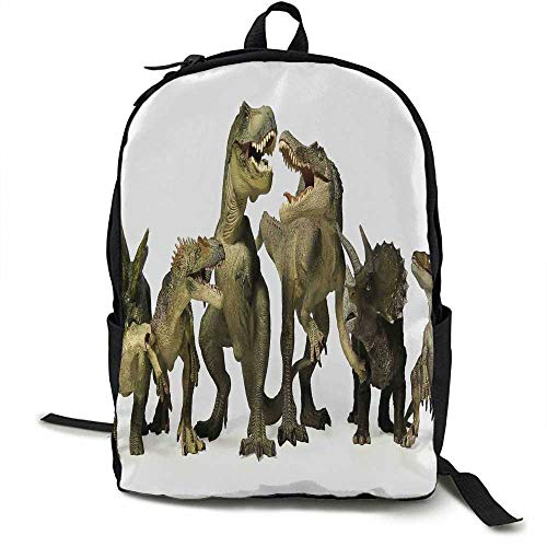 Kids Light travel backpack Dinosaurs T Rex Jurassic 3D Dino Fossil Art Design History Multi-functional daily carrying 16.5 x 12.5 x 5.5 Inch