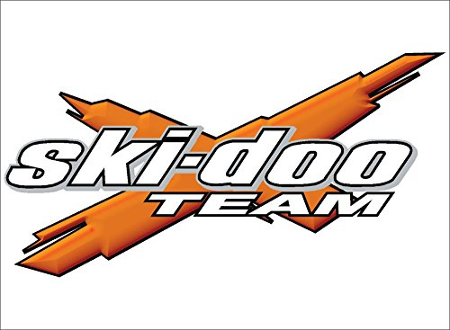 Ski-Doo Team 3DX Orange logo decal, vinyl, graphic (6x12