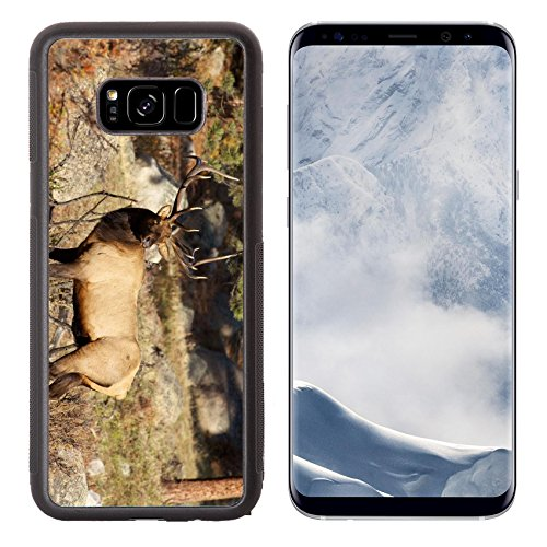 (Luxlady Samsung Galaxy S8 Plus S8+ Aluminum Backplate Bumper Snap Case IMAGE ID: 19223593 Bull Elk Standing in Meadow)