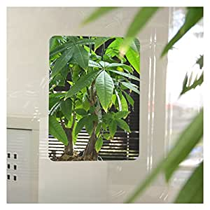 BDF 5MIRF Ultra Clear Highly Reflective Mirror Film for Glass - 8in X 10.5in (2 Sheets)