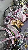 Atlas Erikka IBC Single Speed 26T ATER26SSPINK Women's Bicycle, M (Pink)