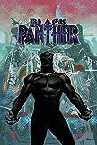 Black Panther Book 6 (Black Panther by Ta-Nehisi Coates (2018))