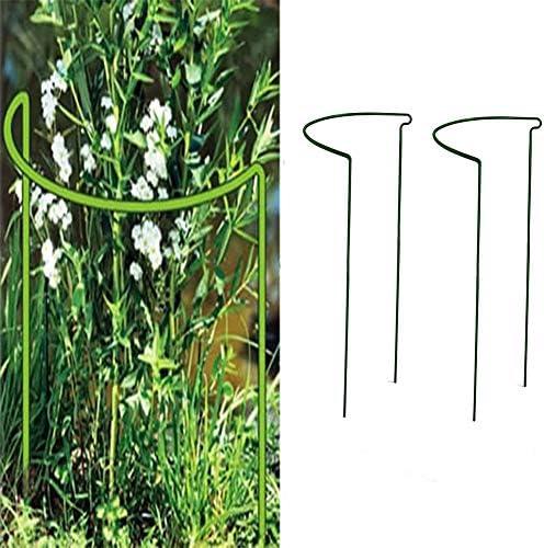 Sarplle Pflanze Stehen 2 Stück Blumen und Staudenhalter Gartenpflanze Stützstangen für Pflanzen wie Rosen, Pfingstrosen, Zapfenblumen