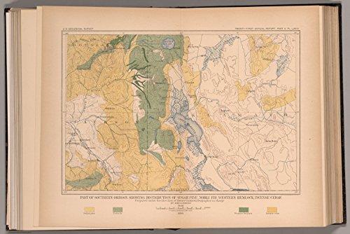 Map Poster - Plate LXXIV. Part of Southern Oregon Showing Sugar Pine, Noble Fir, Western Hemlock, Incense Cedar. 9