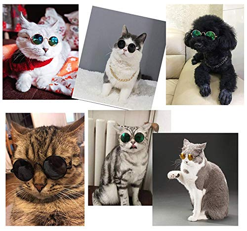 Amazon.com: LAIHUI Gafas de sol para mascota, diseño de ...