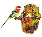PowerTRC Chirping & Dancing Bird With Noise Sensor, Sound Activated Chirping Bird