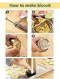 Shule Cookie Press Gun Kit-Includes 20 Cookie