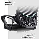 Ergonomic Office Chair Lumbar Support Mesh Chair