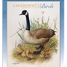Lansdownes Birds 2014 Wall Calendar