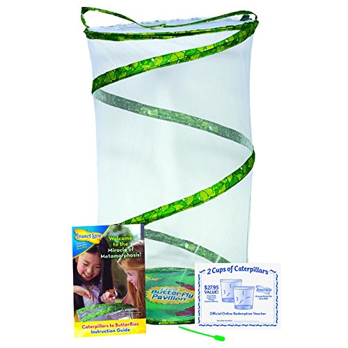 Insect Lore Butterfly Pavilion - Large Habitat Hatching Kit With Voucher For 10 Caterpillars by Insect Lore (Image #3)
