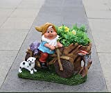 Wonderland Gnome with Bike & Dog with Flower Pot / Planter for Home, garden ,balcony, decor, decoration, kids room, gift item, dwarf