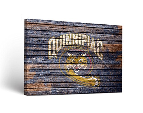 Quinnipiac University Bobcats Canvas Wall Art Weathered Version (18x24)