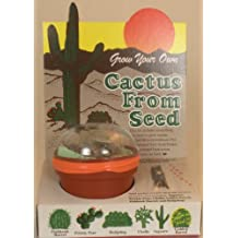 Grow Your Own Cactus From Seeds - Cacti Seed - Assortment of Different Cactus Seeds