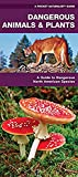 Dangerous Animals & Plants: A Folding Pocket Guide to Dangerous North American Species (Pocket Naturalist Guide Series)