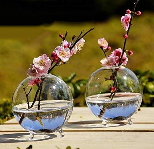 Containers Planters Urns Garden (Vases - Sell Clear Glass Flower Planter Vase Terrarium Container Home Garden Ball Decor S - Paint Florales Like Pastel Decor Living Navideñas Usa Home Colorful)