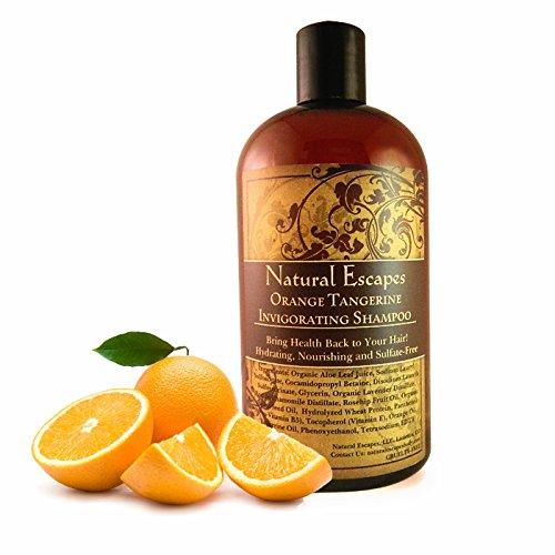 Organic Tangerine & Orange Shampoo   Natural Shampoo for Oily Hair, Grey Hair, Hair Loss & More   Paraben & Sulfate Free Shampoo Leaves Hair Soft & Healthy   16oz
