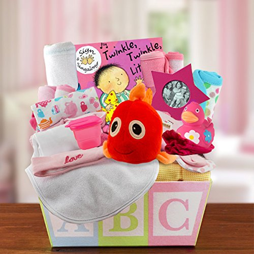 Welcome Home Baby Girl Medium Gift Basket