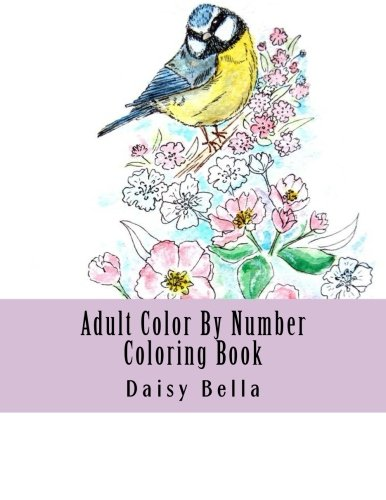 Jumbo Daisy (Adult Color By Number Coloring Book: Jumbo Giant Super Mega Coloring Book Over 100+ Pages of Gardens, Landscapes, Buildings, Animals, Butterflies, ... Relief (Adult Coloring By Numbers Books))