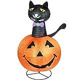 Northlight Pre-Lit Black Cat on a Pumpkin Halloween Yard Art Decoration, 36'', Orange
