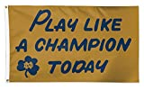 WinCraft Notre Dame PLAY LIKE A CHAMPION with ND Logo 3 x 5 Ft Deluxe Banner Flag