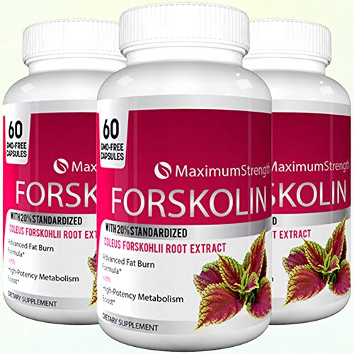 Maximum Strength Forskolin with 20 Standardized for Weight Loss – Max Strength Forskolin Extract with Advacned Fat Burn Formula 60 Capsules 1 Bottle