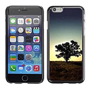 PC/Aluminum Funda Carcasa protectora para Apple Iphone 6 Plus 5.5 Sunset Tree Beautiful Nature 1 / JUSTGO PHONE PROTECTOR