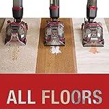 Rug Doctor FlexClean All-in-One Floor