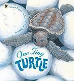 One Tiny Turtle (Nature Storybooks)