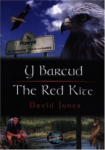 Y Barcud/The Red Kite