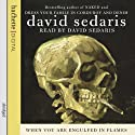 When You Are Engulfed in Flames Hörbuch von David Sedaris Gesprochen von: David Sedaris