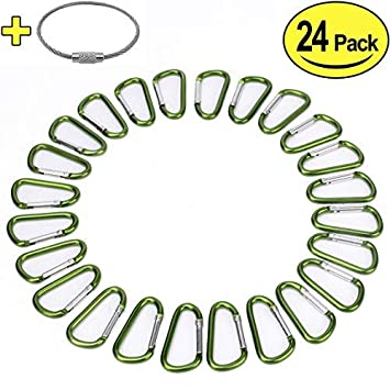 2' Aluminum D Ring Carabiners Clip D Shape Spring Loaded Gate Small Keychain Carabiner Clip Set for Outdoor Camping Mini Lock Snap Hooks Spring Link Key Chain Durable Improved 24 PCS
