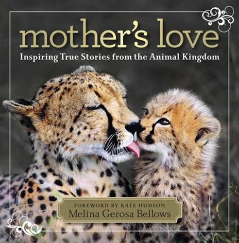 Mother's Love: Inspiring True Stories From the Animal (History Of Halloween National Geographic)