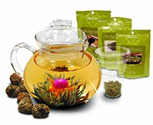 Primula 40-Ounce Glass Teapot with Infuser and Lid with 6 Flowering Teas