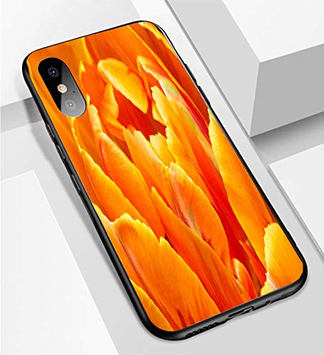 iPhone X/XS Ultra-Thin Phone case Close up of Orange Color Double Early Tulip Anti-Drop Anti-Slip Soft Convenient Protective Shell