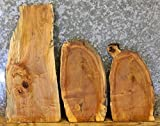 3- Natural Edge Wood Slabs Maple Taxidermy Base/Rustic Craft Pack T: 1 1/16'', W: 12'', L: 24 1/8'' - 7857-7858,7915