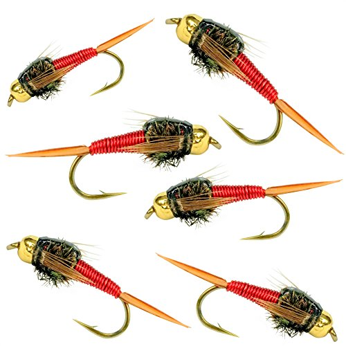 BH Copper John Fly Fishing Nymph Trout Fly Assortment - 6 Flies (Red)