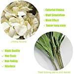 cn-Knight-Artificial-Flowers-6pcs-36-Inch-Long-Stem-Silk-Hyacinth-Flower-Snapdragon-Faux-Antirrhinum-for-Wedding-Bridal-Bouquet-Home-Decor-Housewarming-Centerpieces-Baby-Shower-ReceptionWhite