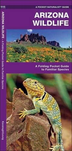 Arizona Wildlife: A Folding Pocket Guide to Familiar Species (A Pocket Naturalist Guide)