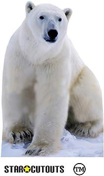 Partyfest - Disfraz de Oso Polar para Adulto (SC139): Amazon.es ...