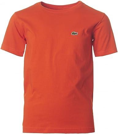 Lacoste - Camiseta de manga corta - para niño: Amazon.es ...