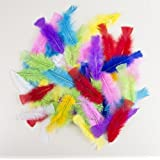 P'TIT CLOWN 14515 Sachet de 50 Plumes 8-12 cm - Multicolore