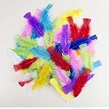P'tit Clown 14515 Sachet de 50 Plumes 8-12 cm - Multicolore