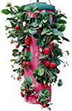 Felknor Ventures TT091112 Topsy Turvy Strawberry Planter