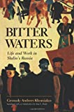 Bitter Waters, Gennady Andreev-Khomiakov and Ann E. Healy, 0813323746