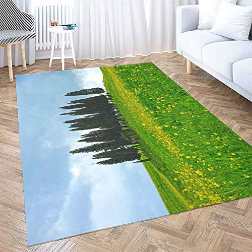 Famous Groups Of 3 For Halloween (Dorm Area Rug,Shorping Halloween Area Rug 2X3 Ft Soft Area Rug Wool Area Rug Famous Group Trees in Springtime Among Yellow Modern Area Rug,Floor Mats for Home Bedroom)