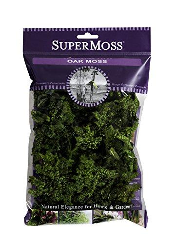 supermoss-23704-oak-moss-preserved-green-2oz